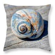 Large Snail Shell Throw Pillow