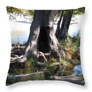 Large Tree Trunk Throw Pillow