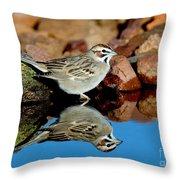 Lark Sparrow Chondestes Grammacus Throw Pillow