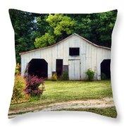 Larsen Barn Throw Pillow