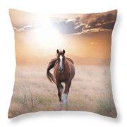 Lassie Come Home Throw Pillow