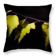 Last Autumn Gifts Throw Pillow