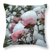 Last Bloom Of Summer Throw Pillow