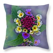 Last Blooms Number One Throw Pillow