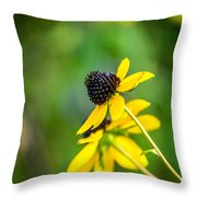 Last Blooms Of Summer Throw Pillow