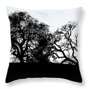 Final Journey Throw Pillow
