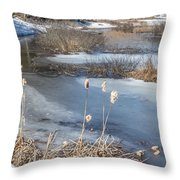 Last Days Of Winter Throw Pillow