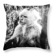 Last Hope Of Freedom Throw Pillow