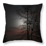 Last Light Throw Pillow by Ella Char