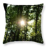 Last Light In The Forest Throw Pillow
