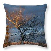 Last Light Last Leaves Throw Pillow