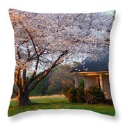 Last Light Of Day In Early Spring Throw Pillow