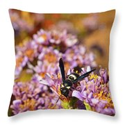 Last Meal For Paper Wasp Before Winter Throw Pillow