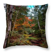 Last Of The Color On Green Bridge Road Throw Pillow