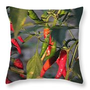Last Of The Peppers Throw Pillow