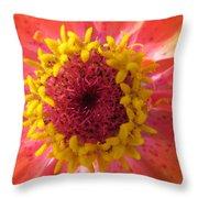 Last Orange Bloom Throw Pillow