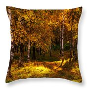 Last Song Of The Autumn 1 Throw Pillow