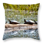 Last Sun Tan Throw Pillow