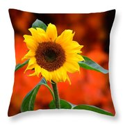 Last Sunflower Horizontal Throw Pillow