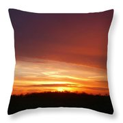 Last Sunset Of 2013 Throw Pillow