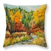 Latah Creek Fall Colors Throw Pillow
