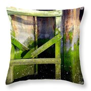 Late Afternoon Beauty Throw Pillow