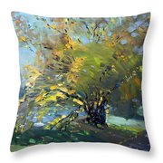 Late Afternoon By The River Throw Pillow