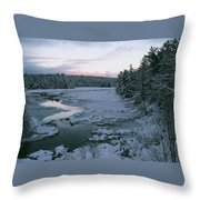 Late Afternoon In Winter Throw Pillow