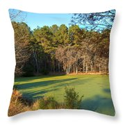 Late Afternoon Long Shadows Throw Pillow