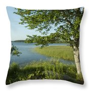 Late Afternoon On Worden Pond Throw Pillow