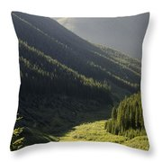 Late Afternoon Shroud Throw Pillow