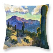 Late Afternoon Tucson Throw Pillow