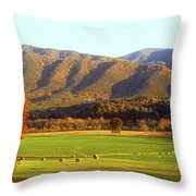 Late Autumn Afternoon In Cades Cove Throw Pillow