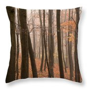 Late Autumn Beech Throw Pillow