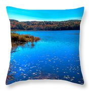 Late Autumn On Loon Lake Throw Pillow