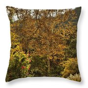 Late Autumn Walk Throw Pillow
