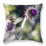 Late Bloomers Throw Pillow by Dana Moyer