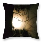 Late December's Farewell Throw Pillow