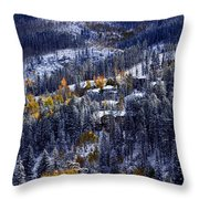 Late Fall In Vail Throw Pillow