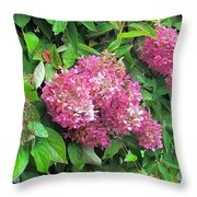 Late Hydrangea Flower Throw Pillow