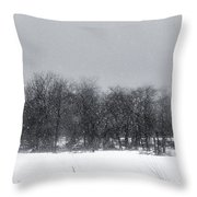 Late Migration Throw Pillow