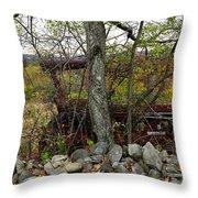 Late October Throw Pillow