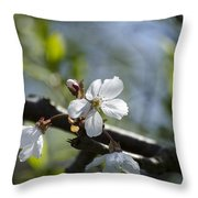 Late Spring Blossom Throw Pillow