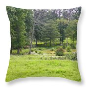 Late Summer By The Pond Throw Pillow