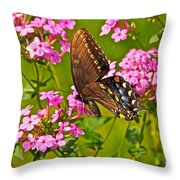 Late Summer Color Throw Pillow