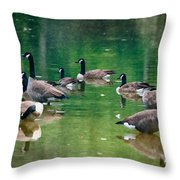 Late Summer Gathering Throw Pillow