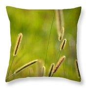 Late Summer Grasses Throw Pillow