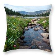 Late Summer Mountain Landscape Throw Pillow