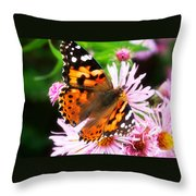 Late Summer Painted Lady Throw Pillow