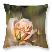 Late Summer Rose Throw Pillow